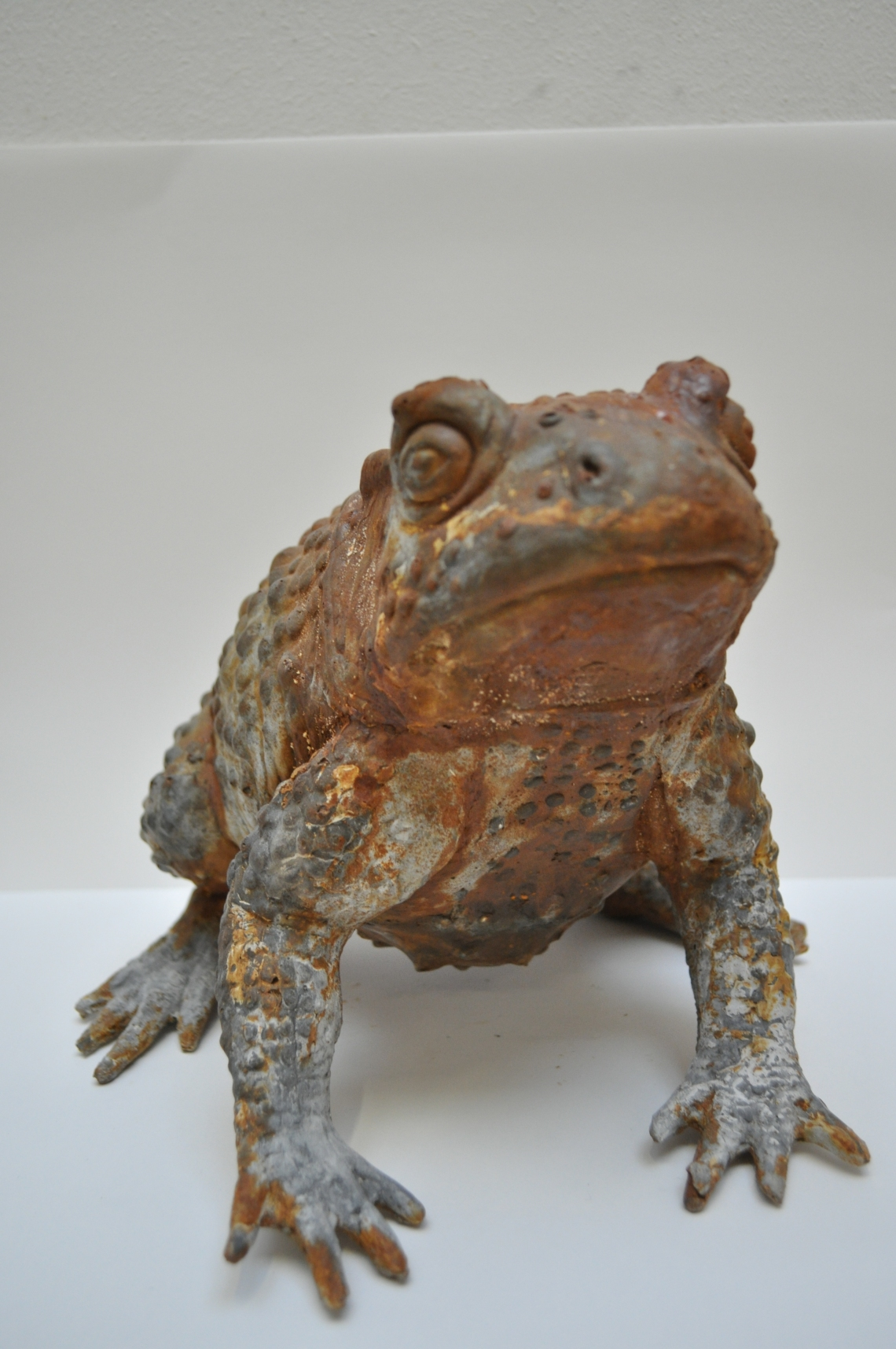 Plaster, Iron Powder (Toad)